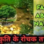 100 Amazing Nature Facts in Hindi